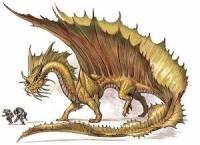 Do jaké výšky dokáže vyletět dospělý zlatý drak? (náhled)