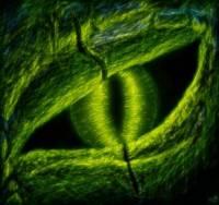 Zelený drak je lovec (náhled)