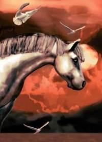 Tenhle koník se jmenuje... (náhled)