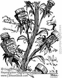 Geneticky modifikované rostliny (náhled)