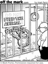 Šimpanzi rozhodně (náhled)