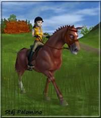 Kolik koní mají ve stáji v Jorviku? (náhled)