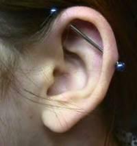 jak se nazývá dlouhý tyčka v uchu která prochází chrupavkou? (náhled)