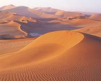 Jak se říká písečné duně,která má tvar srpku měsíce ?