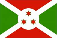 Kterou zemi reprezentuje vlajka na obrázku? (náhled)