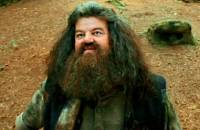 Rubeus Hagrid je ... (náhled)
