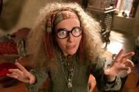 Který předmět vyučuje v Bradavicích profesorka Trelawneyová ? (náhled)