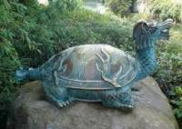 Čeho je symbolem želva? (náhled)