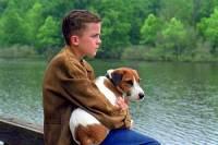 Fotografie č.14 je z filmu/seriálu: (náhled)