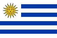Vlajka 9 (náhled)
