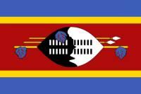 Vlajka IV (náhled)