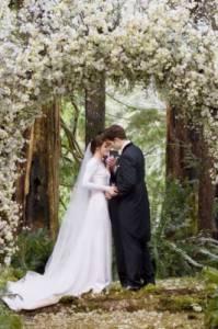 Ze, které svatby je tato fotka? (náhled)