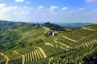 Vinice na obrázku č.13, ze kterých pochází proslulé víno Barolo, se nacházejí ve vinařské oblasti zapsané na seznamu UNESCO: (náhled)