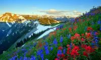 Z kterého národního parku zapsaného na seznamu UNESCO je fotografie č.8? (náhled)