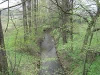 Jaký je oficiální hydrologický název potoku, kterému většina obyvatel říká Dolní Datyňka, popř. pouze Datyňka? (náhled)