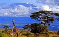 Fotografie č.2 je z Národního parku Kilimandžáro, který byl na seznam UNESCO zapsán v r.1987. Ve kterém státě se rozprostírá národní park se stejnojmennou horou? (náhled)