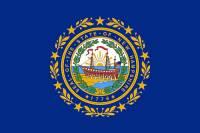 Kterému státu USA patří vlajka na obrázku? (náhled)