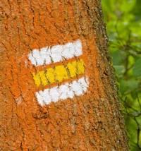 Co znamená žlutá turististá značka? (náhled)