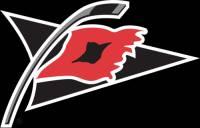 Logo na obrázku patří týmu: (náhled)