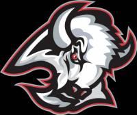 Toto logo patřilo týmu: (náhled)