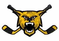 Který hokejový klub má toto logo? (náhled)