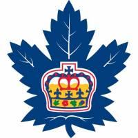 Kterého hokejového klubu je toto logo? (náhled)