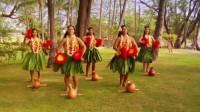 Jak se nazývá tradiční domorodý tanec z Havaje? (náhled)