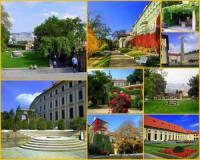 Komplex staveb a zahrad na fotografii č.8 je: (náhled)