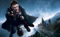 Tohle je samozřejmě Harry Potter ale na jakém postu hraje famfrpál? (náhled)