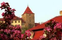 V areálu Pražského hradu bylo postaveno i několik věží. Jak se jmenuje věž na obrázku č.15? (náhled)