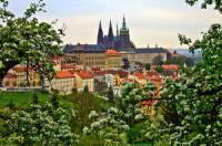 Ve které pražské čtvrti se nachází Pražský hrad? (náhled)
