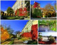Jak se jmenuje historická zahrada v areálu Pražského hradu na fotografii č.17? (náhled)