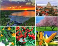 Jak se jmenuje jedna ze čtyř nejúrodnějších oblastí ČR na obrázku č.16? Rozkládá se při toku významné řeky ČR a proslula pěstováním ovoce a zeleniny, zejména okurek. (náhled)