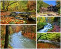 Jak se jmenuje romantické údolí na fotografii č.19, které patří k nejhezčím a turisticky atraktivním přírodním rezervacím v ČR? (náhled)