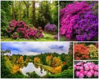 Jak se jmenuje jeden z nejkrásnějších a nejvýznamnějších zámeckých parků v ČR na fotografii č.20, který je národní přírodní a kulturní památkou a pro svoji unikátnost byl zapsán i na Seznam světového dědictví UNESCO a je tak chráněn i jako památka UNESCO? (náhled)