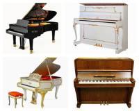Které město je spjato s výrobou koncertních klavírů a akustických pian značky Petrof na obrázku č.13? Společnost Petrof je největším výrobcem akustických pian v Evropě. (náhled)