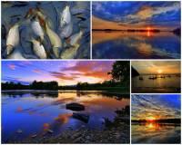 Rybníkářstvím a chovem ryb – obrázek č.14 – proslul kraj: (náhled)