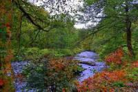Kterými kraji ČR protéká řeka Svratka na fotografii č.22? (náhled)