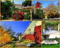 Jak se jmenuje zahrada na fotografii č.11, která zkrášluje bezprostřední okolí Pražského hradu? (náhled)