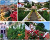 Jedna z nejkrásnějších palácových zahrad  Pražského hradu na fotografii č.22 se jmenuje: (náhled)