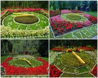 Unikátní květinové hodiny na fotografii č.12 jsou symbolem lázeňského města: (náhled)