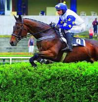 Koňské dostihy na obrázku č.7 se staly symbolem města: (náhled)