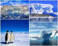 Který slavný cestovatel a polární badatel jako 1. dosáhl jižního pólu na fotografii č.8? (náhled)