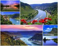 Označ státy, kterými protéká řeka Rýn: (náhled)