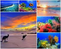 Korálové moře je součástí kterého oceánu? (náhled)