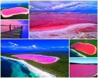 """""""Růžový drahokam uprostřed lesů"""" – tak se také říká unikátnímu jezeru na fotografii č.14, jehož voda má růžovou barvu. Jezero se zařadilo k nejkrásnějším místům světa. Jaký je oficiální název jezera?  (náhled)"""
