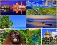 Jak se jmenuje 3. největší ostrov na světě a současně největší ostrov souostroví Velké Sundy na fotografii č.1? Na ostrově většinu plochy zaujímal deštný prales, jehož plocha se stále zmenšuje. (náhled)