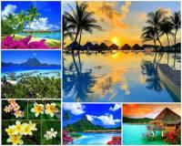 Jak se jmenuje ostrov sopečného původu na fotografii č.9, který je jedním z atolů souostroví Francouzská Polynésie? Ostrov je turisticky atraktivním místem, neboť je položený uprostřed překrásné modré laguny obklopené menšími ostrůvky a to celé je chráněno korálovým útesem. Pobřeží ostrova lemují kokosové palmy, v jejichž stínu kvetou ibišky a další subtropické květiny. (náhled)