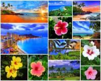 Jak se jmenuje souostroví na fotografii č.3? Souostroví se skládá z 8 hlavních ostrovů a 95 menších korálových a sopečných ostrovů, ostrůvků, skal a útesů. Na souostroví se nachází nejvyšší štítová sopka světa a měřeno ode dna oceánu tvoří souostroví nejvyšší pohoří světa. (náhled)