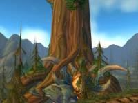 Jak se jmenuje tento strom (náhled)
